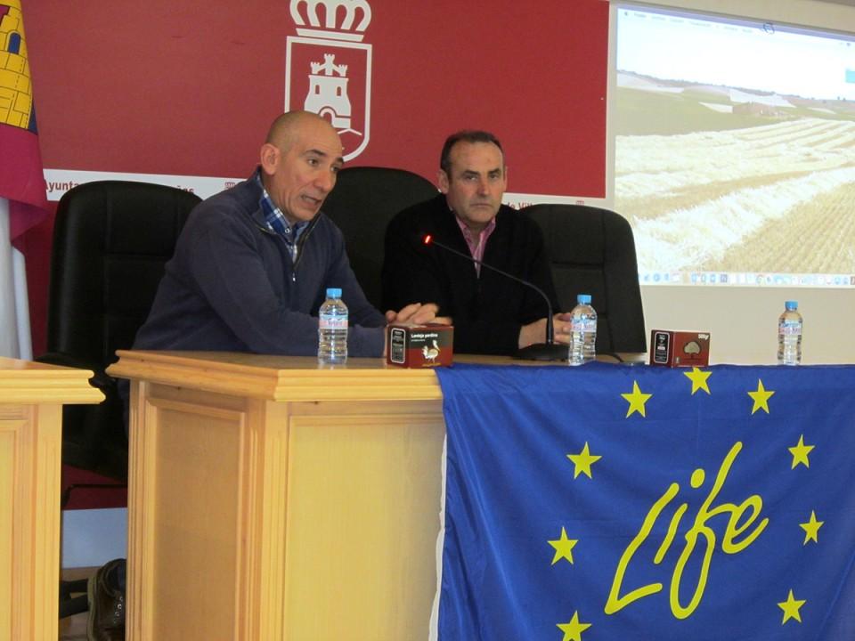 Expertos internacionales se reúnen en La Mancha para analizar fórmulas de apoyo al sector agrario que permitan proteger las aves esteparias